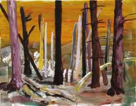 Erfundene Landschaften (2010)_12